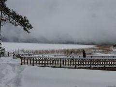 Abant Tabiat Parkı, sisle kaplandı