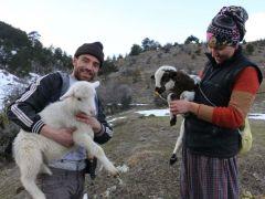Baharın gelişini çocukları gibi sevdikleri koyunlarıyla karşıladılar
