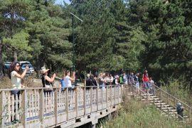 Doğal güzellikleriyle ünlü Bolu'ya, bayram tatilinde 84 bin 798 tatilci geldi