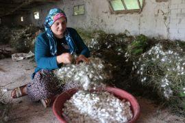 (Özel) Kümeslerinin yetersizliği nedeniyle tavukçuluk yapamayan köylüler çareyi ipekböceğinde buldu