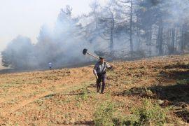 Bolu'da orman yangınında 10 dönümlük alan zarar gördü