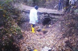 Bolu'da 17 yaşındaki genci öldüren sanığa müebbet hapis istendi
