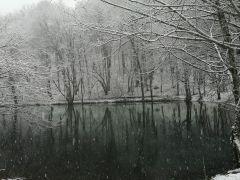 Doğa harikası Yedigöller beyaz örtü ile kaplandı