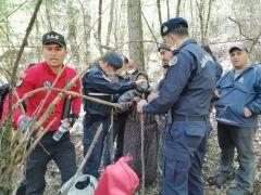 Bolu'da, kaybolan yaşlı kadını jandarma timleri buldu