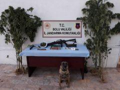 Bolu'da 1 ay içinde 33 kilo esrar, 327 gram eroin yakalandı