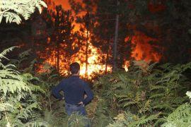 Bolu'da, orman yangını 5 saatte kontrol altına alındı