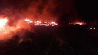 Bolu'da yaylada çıkan yangında 2 ev, 2 ahır ve samanlık yandı