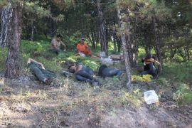 Saatlerce yangınla mücadele eden ekipler ormanda uyudu