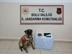 Bolu'da uyuşturucu operasyonu: 8 gözaltı