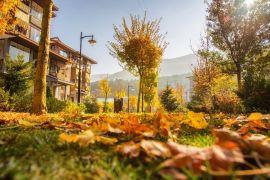Narven Termal Kasaba, sonbaharın renklerine büründü