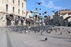 Bolu'da sessiz kalan sokaklardaki güvercinleri polisler besledi