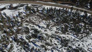Bolu'da karların erimesi ve fırtına onlarca ağacı devirdi