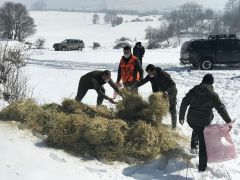 Bolu'da yaban hayvanlarına 35 ton yem bırakıldı