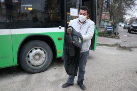 Otobüs şoförü yol kenarında bulduğu yaralı şahini ölümden kurtardı