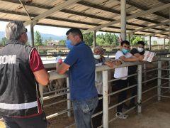 Kurban Bayramı öncesi hayvan pazarlarında sahte para denetimi