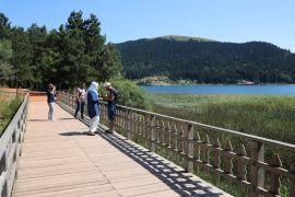 Abant Tabiat Parkı yaz sezonunu yüzde 90 dolulukla geçiriyor