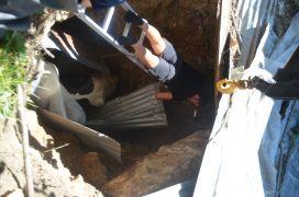 Bolu'da, 3 metrelik çukura düşen ineği itfaiye kurtardı